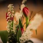 KHP_aromakongress_mondsee-4