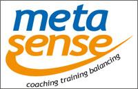 meta-sense-web